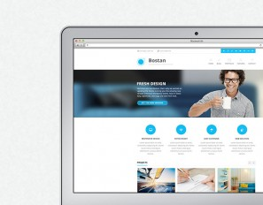 Bostan Wordpress Theme