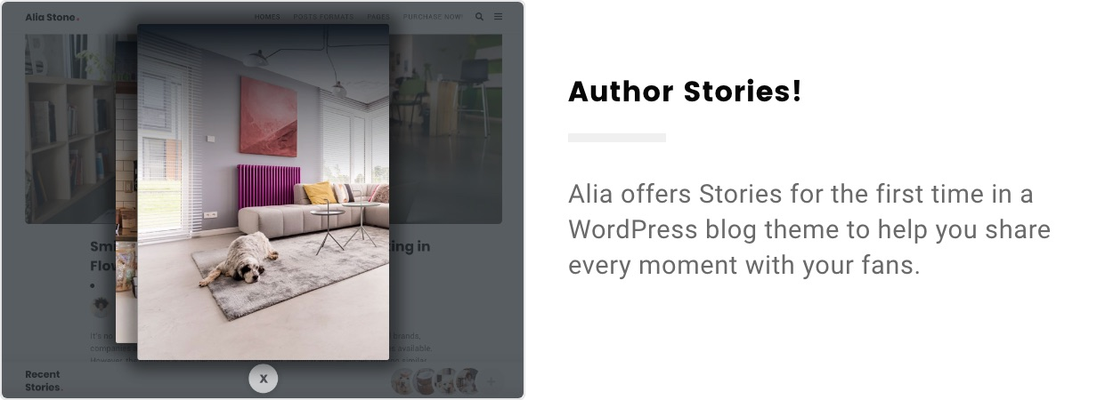 Alia – Minimal Personal Blog (Personal) author stories 2x